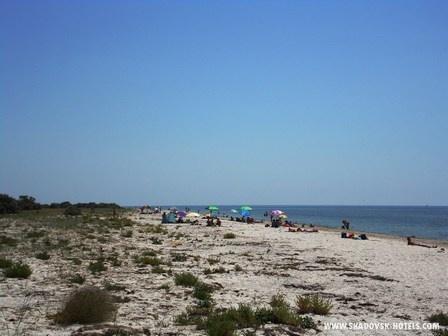 Пляжи острова Джарылгач